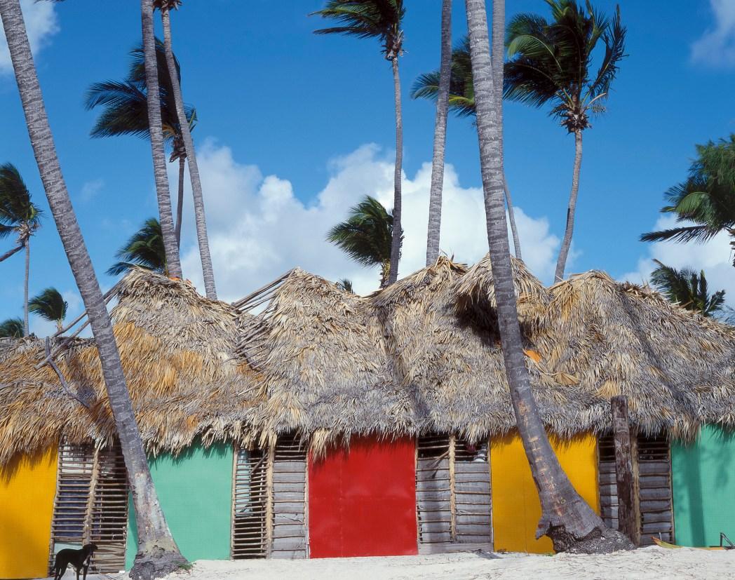 Παραλία με φοίνικες και πολύχρωμες καλύβες στον Άγιο Δομίνικο