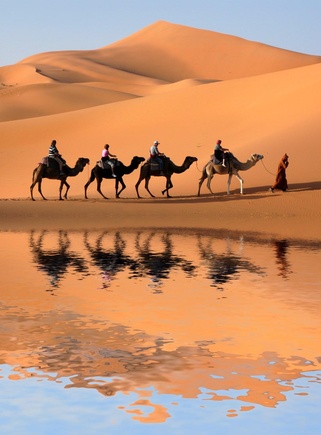 Εκδρομή με καμήλα στην έρημο του Μαρόκου