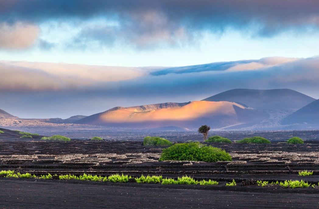 Ηφαιστειογενές τοπίο στο Λανθαρότε, στα Κανάρια Νησιά